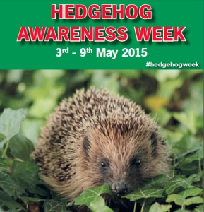 Hedgehog Awareness Weeks
