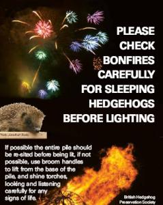 Bonfires